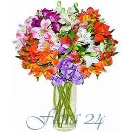 Доставка цветов в сумы живые цветы из органзы мастер класс алина болобан